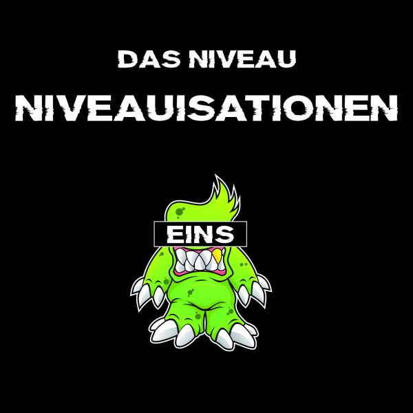 Niveauisation_Cover_1500